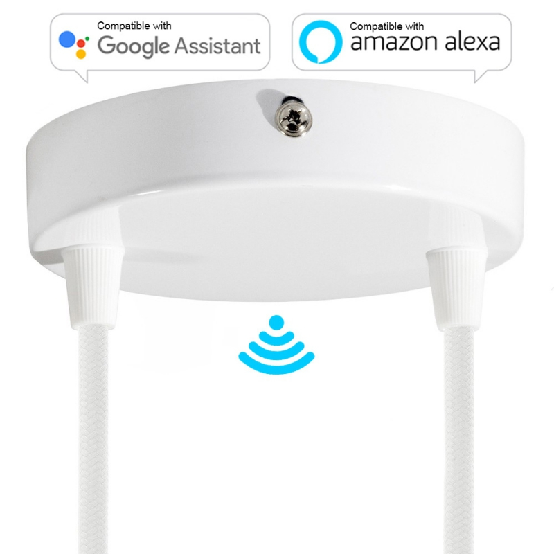 SMART cylindrical metal 2-hole ceiling canopy kit - compatible with voice assistants